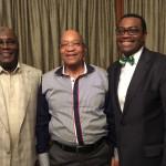 AfDB Presidency: Buhari Meets President Zuma Over Adesina